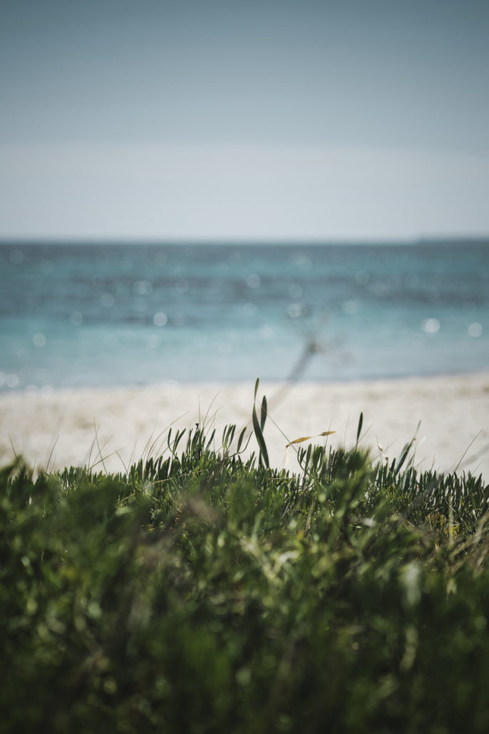 anni ocean instagram